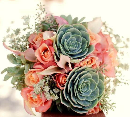 bouquet-suculentas