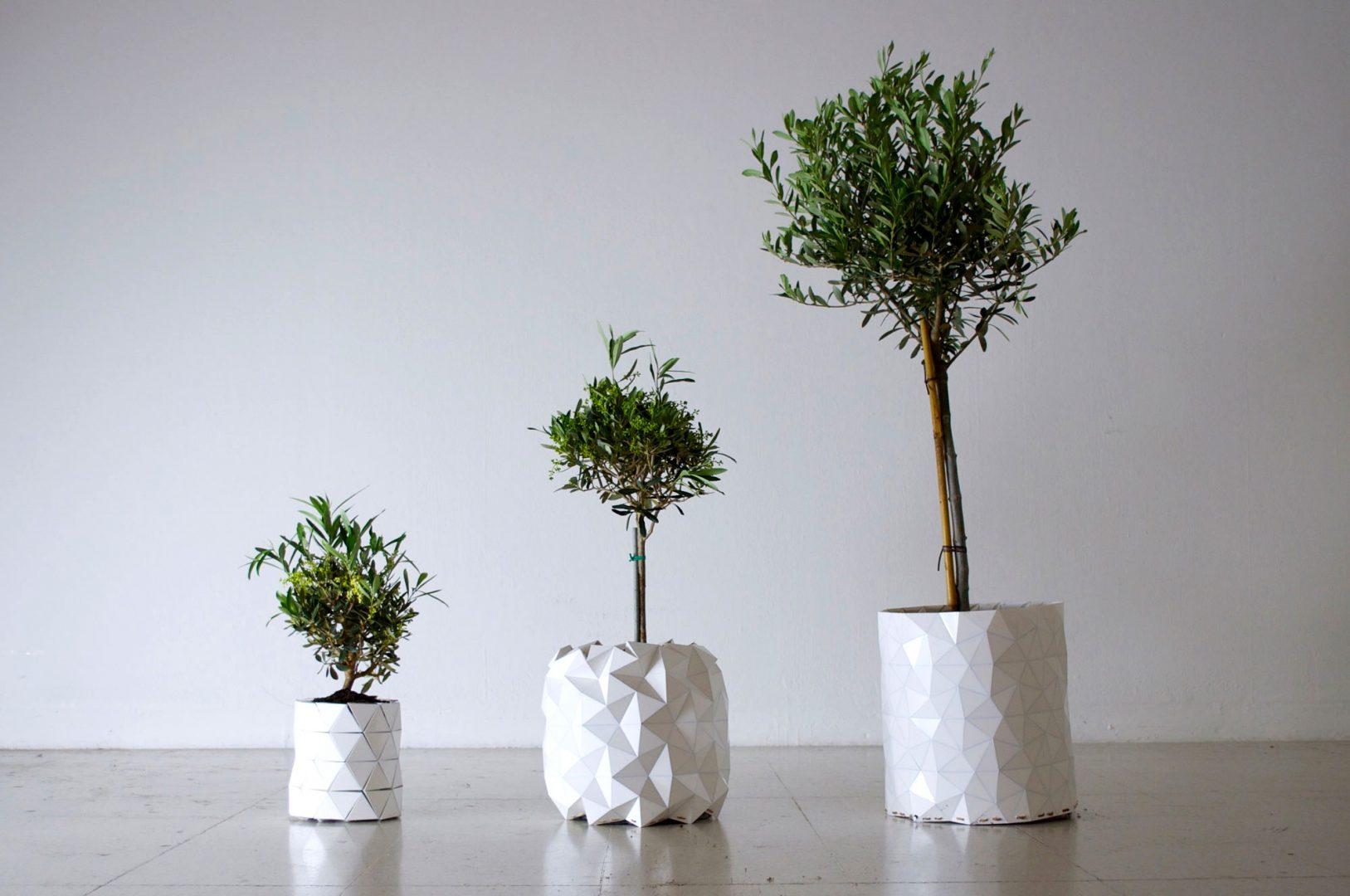Conheça o vaso origami que cresce junto com a planta