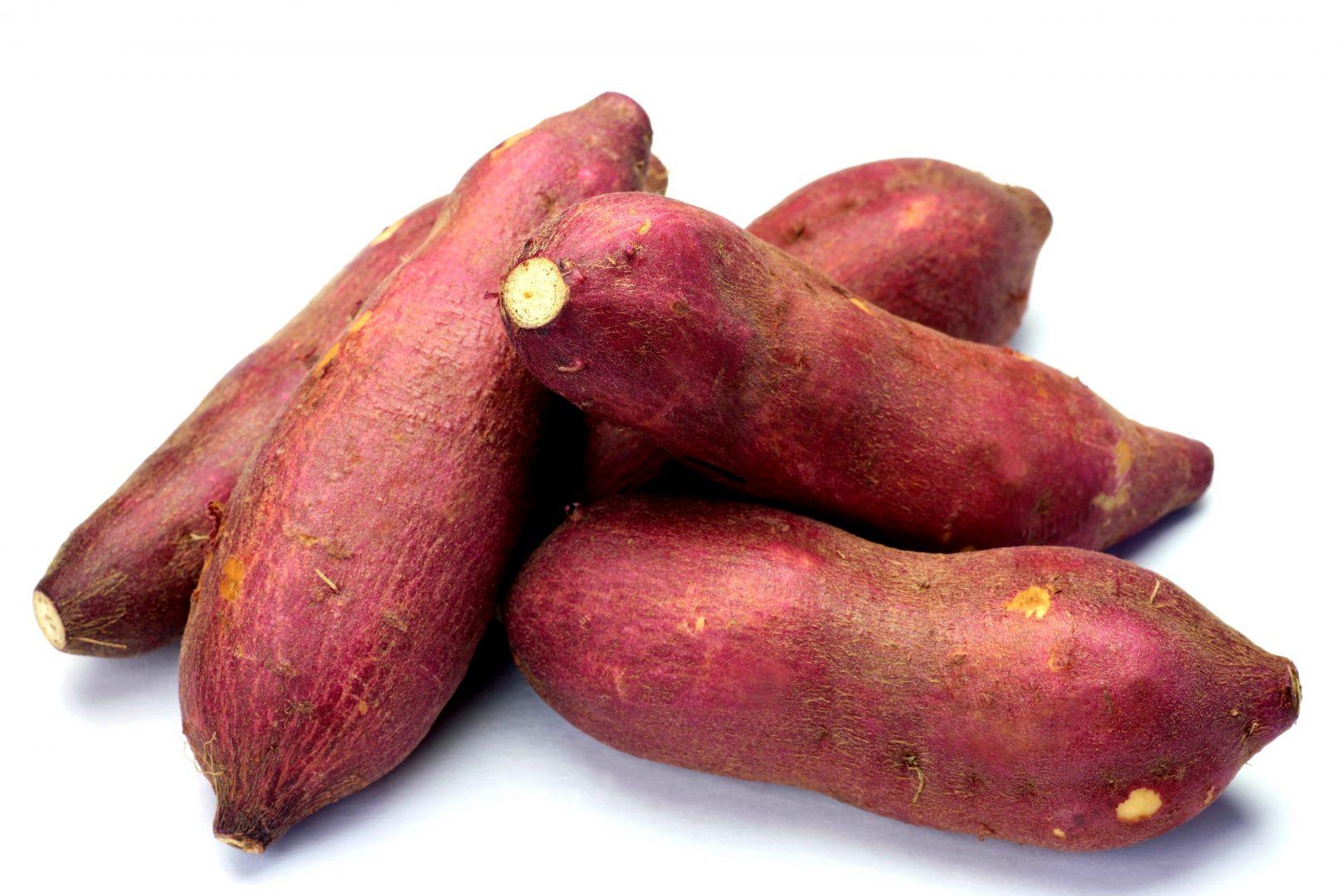 Cultive sua própria batata-doce com sucesso