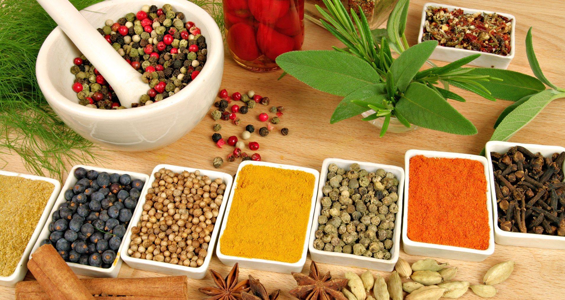 Livro digital gratuito reúne informações sobre 383 espécies de plantas medicinais