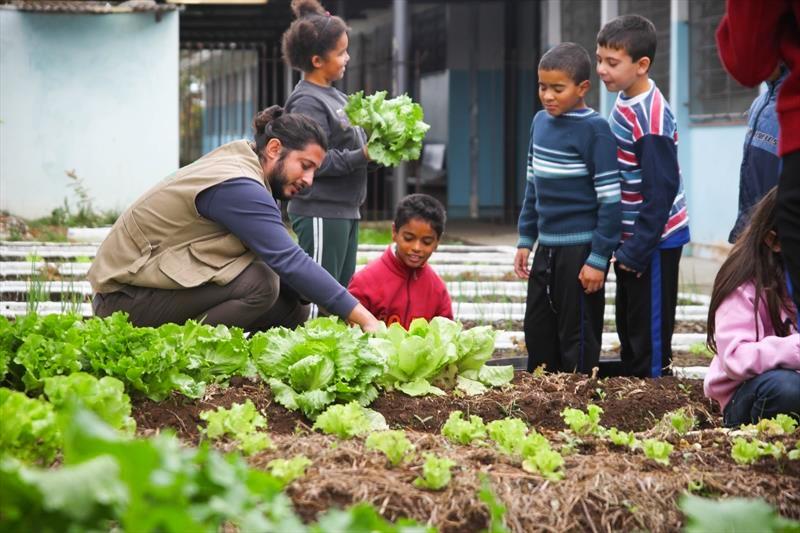 Manual grátis dá todas as dicas para criar e usar hortas educativas em escolas