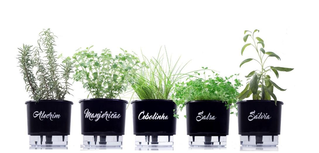 Cultivando os 7 temperos da Linha Gourmet de Vasos Autoirrigáveis