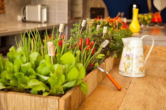 Os benefícios de cultivar o próprio alimento   Blog da Plantei
