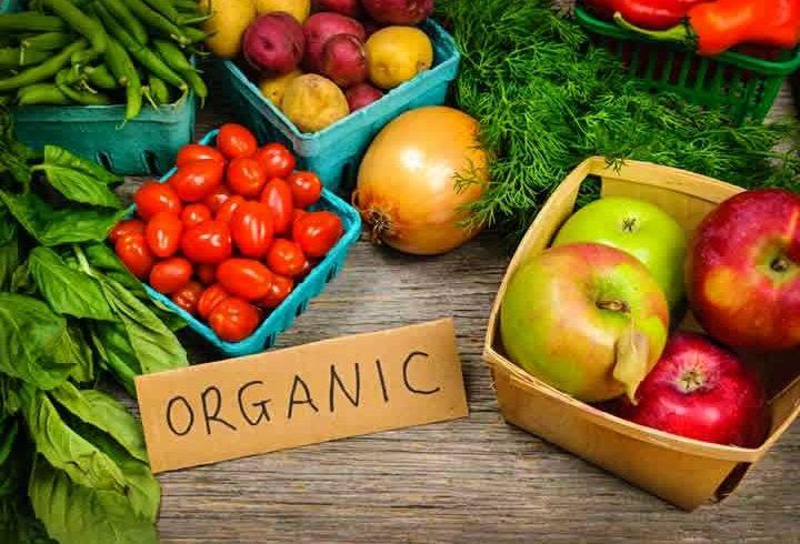 Entenda quais são as vantagens e benefícios dos alimentos orgânicos
