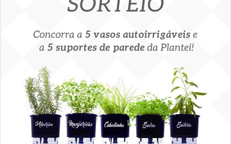 Concorra a 5 Vasos Autoirrigáveis Linha Gourmet e 5 Suportes de parede