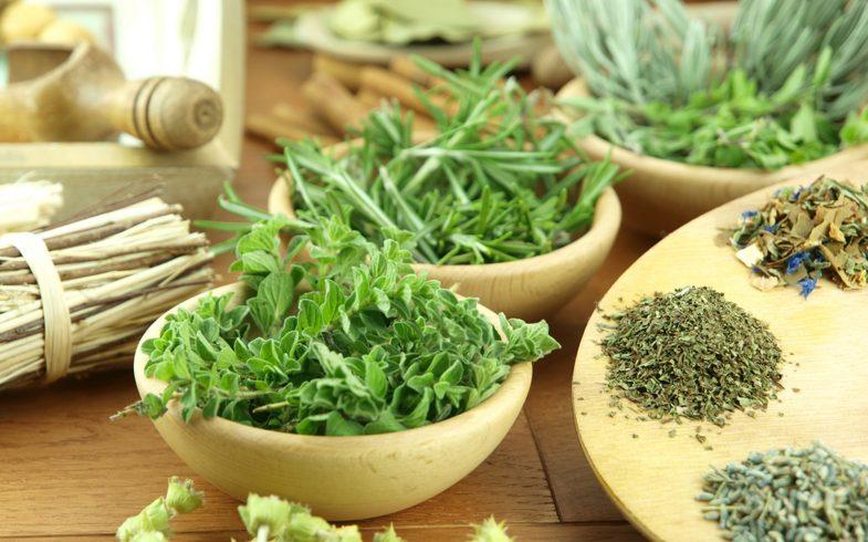 10 melhores cultivos para fazer temperos naturais