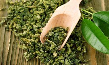 Benefícios e propriedades do chá verde