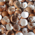 Como preparar farinha de cascas de ovos