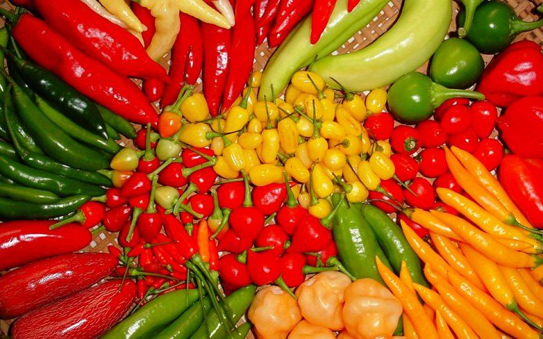 Conheça os diferentes tipos de pimentas