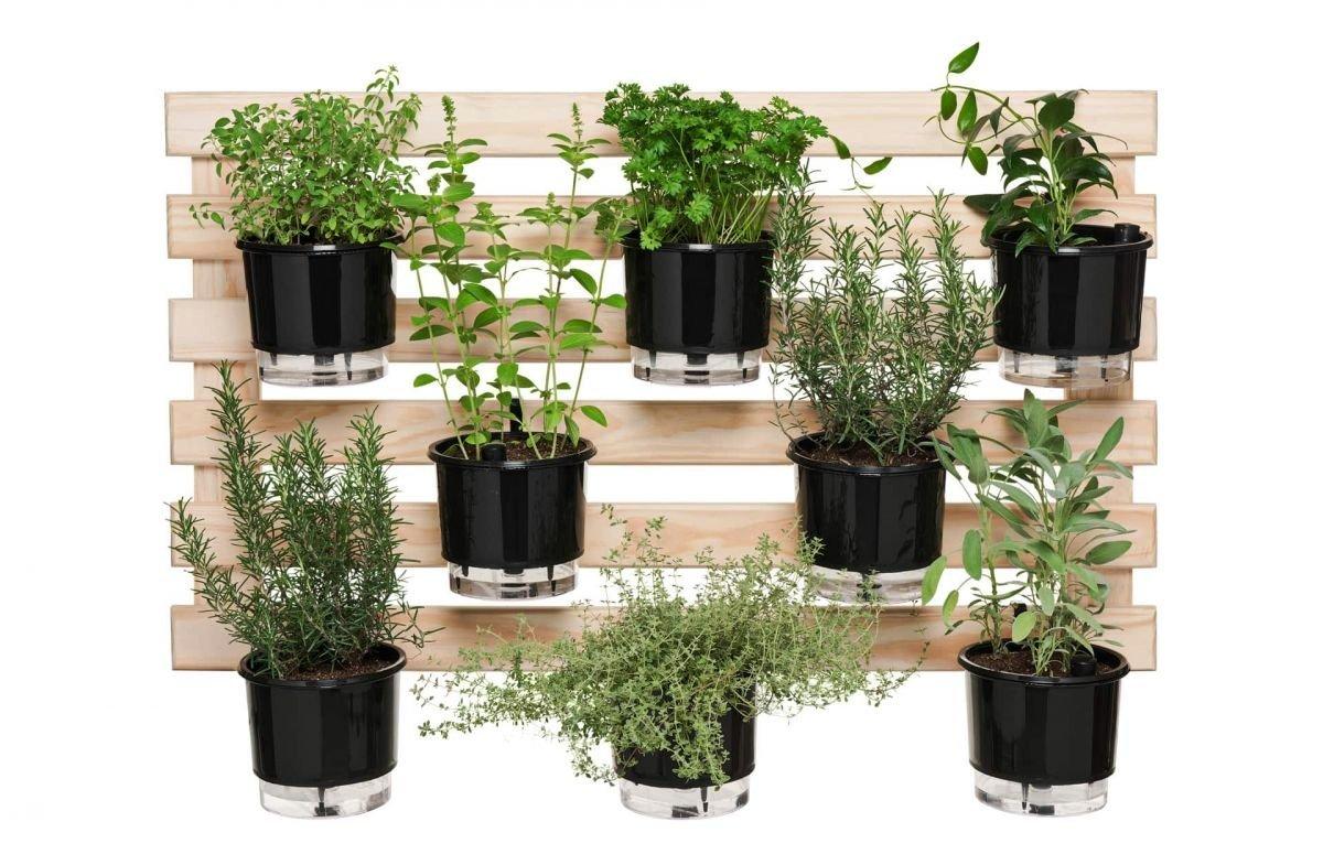 cultivo de plantas em pequenos espaços