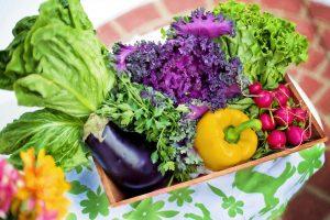 Recipiente com grande quantidade de hortaliças, provavelmente recém colhidas