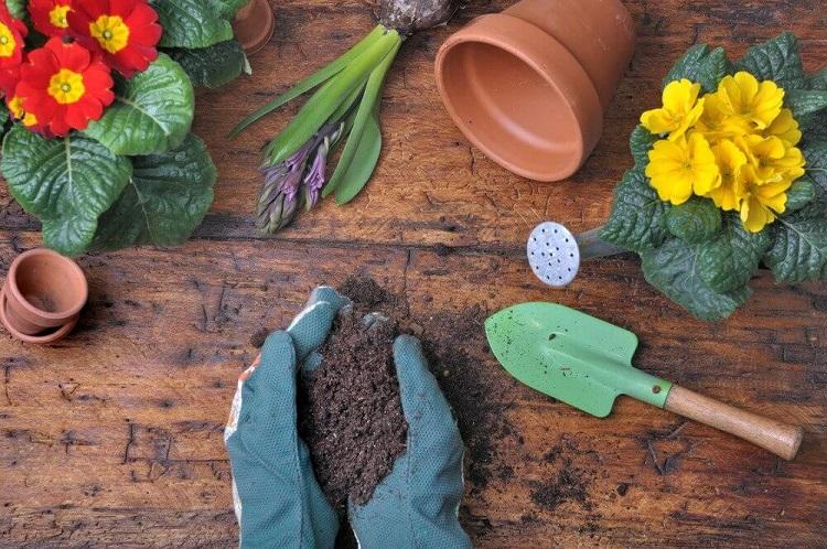 acessórios para jardinagem