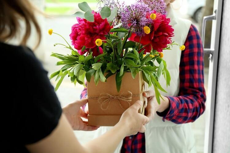 presentes para quem gosta de plantas